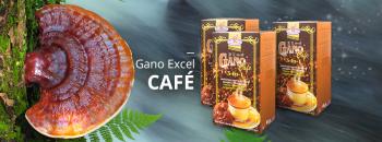 Gano Excel Cafe