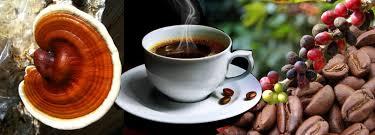 Ganoderma, Taza y Granos de Café